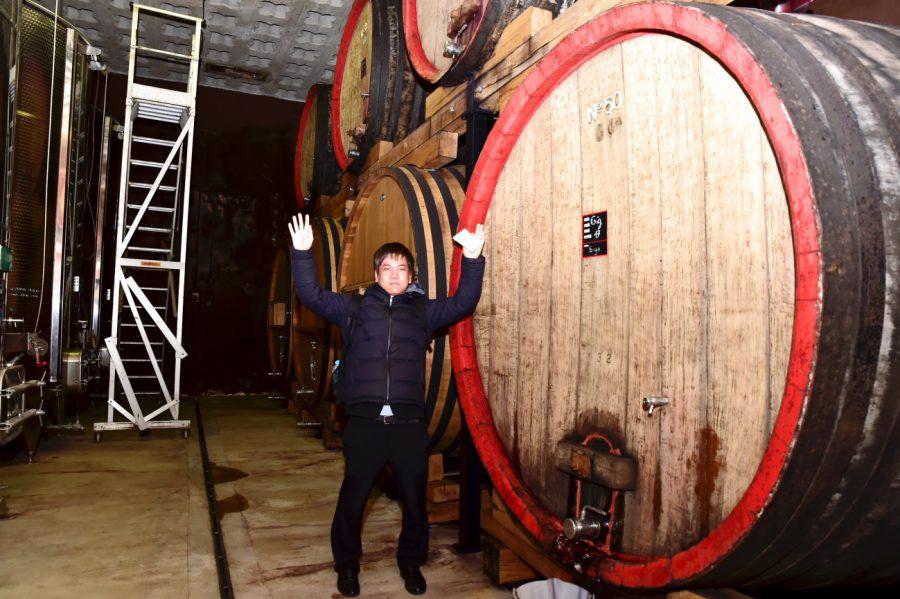 ワインによっては、こんな大きな木樽で熟成させています。