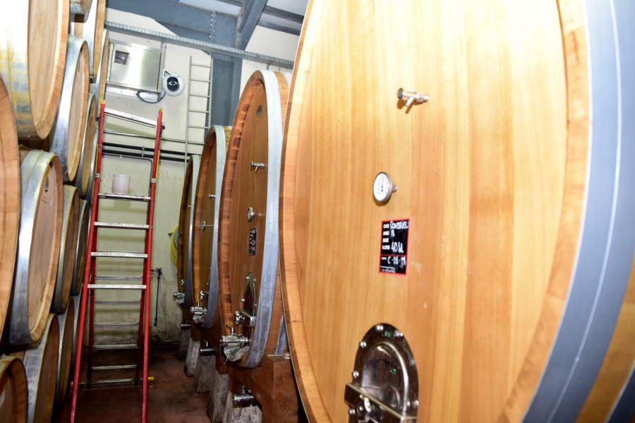 発酵期間が短いことで、ぶどう自体の美味しさを十分に引き出したワインに仕上がっています。